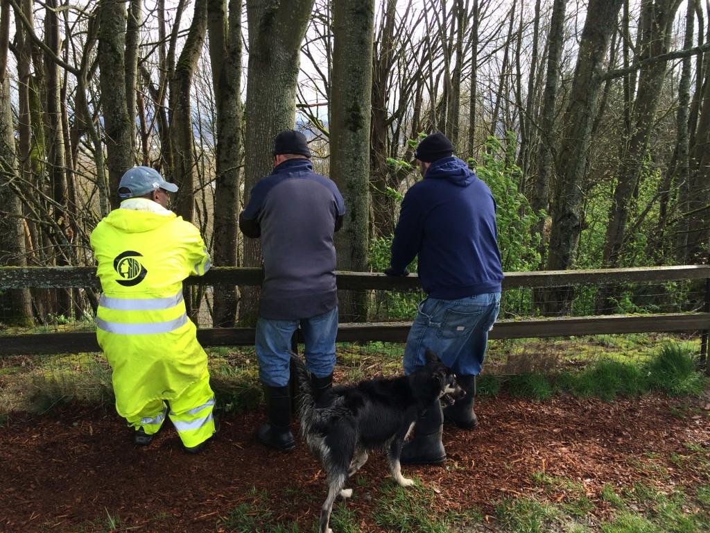 Volunteers repair a fence post at Grandview work party