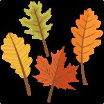 large_fall-leaf-set4